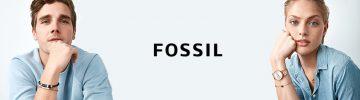 b-cat-fossil-19-02-870x259