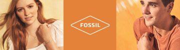 b-cat-fossil-20-09-870x259